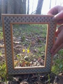 Der 3 D Bilderrahmen läßt auch kleine Dinge sichtbar werden!