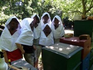Bienenschule