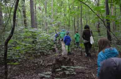 Danach gehen wir in den Wald auf Spurensuche