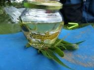 und Sonnenblumenöl...