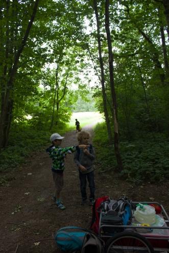 Galerie Natürlich wild - Waldferien